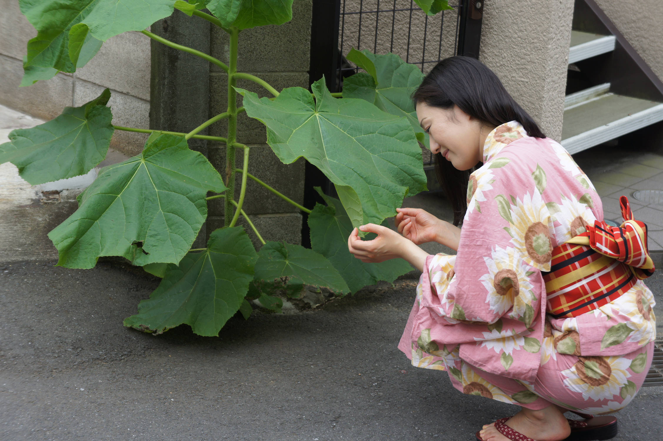 鈴木美智子 アーティスト写真